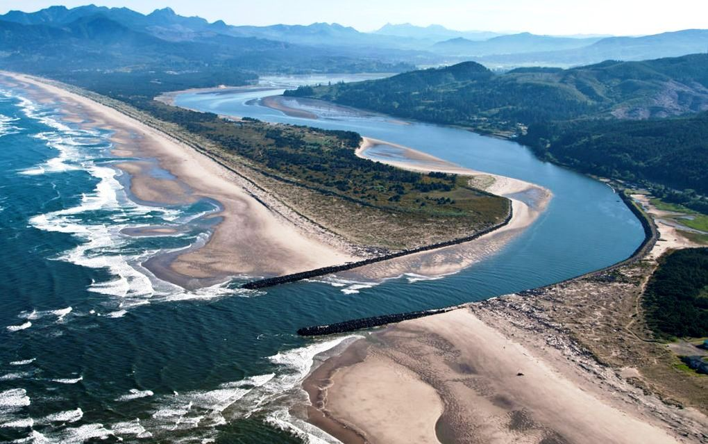 Reduced Chinook salmon bag limit takes effect for the mouth of Nehalem Bay