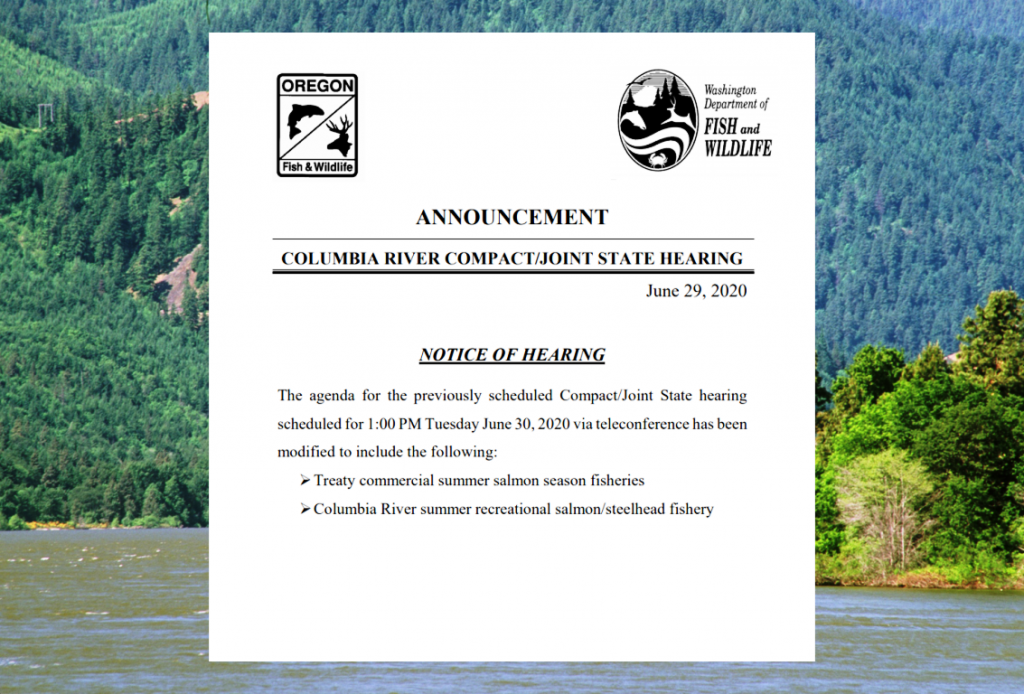 Joint Staff report on current status of Columbia River Salmon and Steelhead fisheries